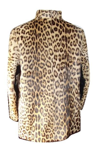 itou-leopard-j-b