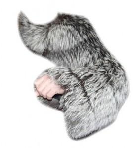 arm-charm-f1